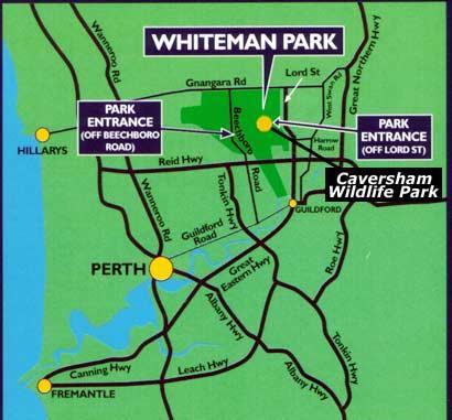 Whiteman Perth